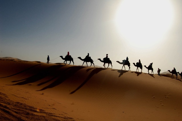 beautiful sahara-desert